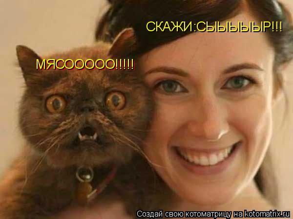 Котоматрица: СКАЖИ:СЫЫЫЫЫР!!! МЯСООООО!!!!! МЯСООООО!!!!!