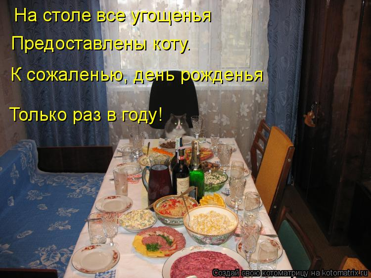 Котоматрица: На столе все угощенья Предоставлены коту. К сожаленью, день рожденья Только раз в году!
