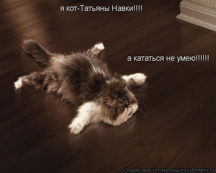 Котоматрица: я кот-Татьяны Навки!!!!  а кататься не умею!!!!!!