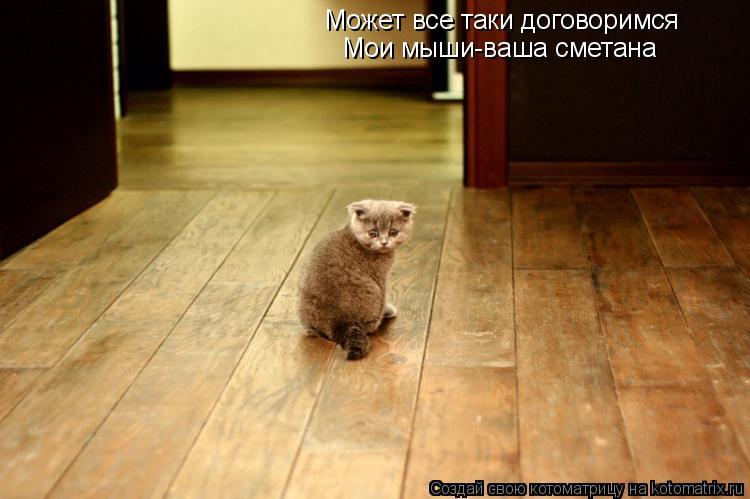 Котоматрица: Может все таки договоримся Мои мыши-ваша сметана