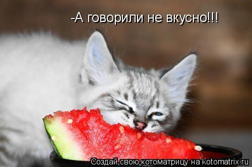 Котоматрица: -А говорили не вкусно!!!