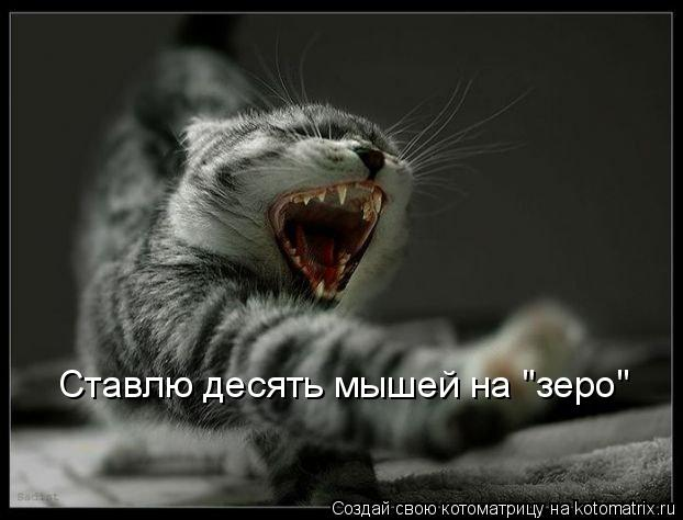 """Котоматрица: Ставлю десять мышей на """"зеро"""""""