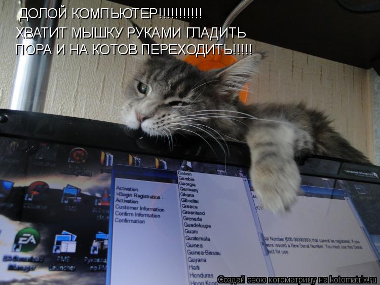 Котоматрица: ДОЛОЙ КОМПЬЮТЕР!!!!!!!!!!! ХВАТИТ МЫШКУ РУКАМИ ГЛАДИТЬ ПОРА И НА КОТОВ ПЕРЕХОДИТЬ!!!!!