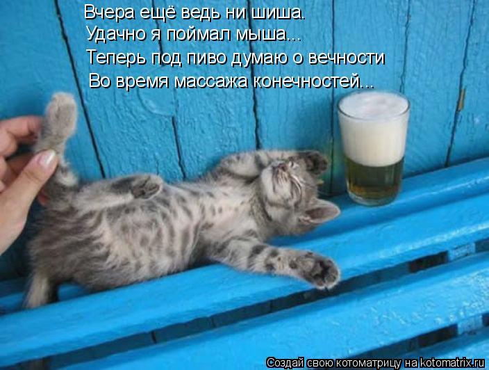 Котоматрица: Вчера ещё ведь ни шиша. Удачно я поймал мыша... Теперь под пиво думаю о вечности Во время массажа конечностей...