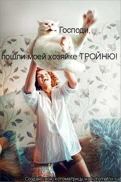 Котоматрица: - Господи,  пошли моей хозяйке ТРОЙНЮ!