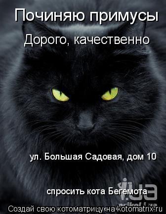 Котоматрица: Починяю примусы Дорого, качественно ул. Большая Садовая, дом 10 спросить кота Бегемота