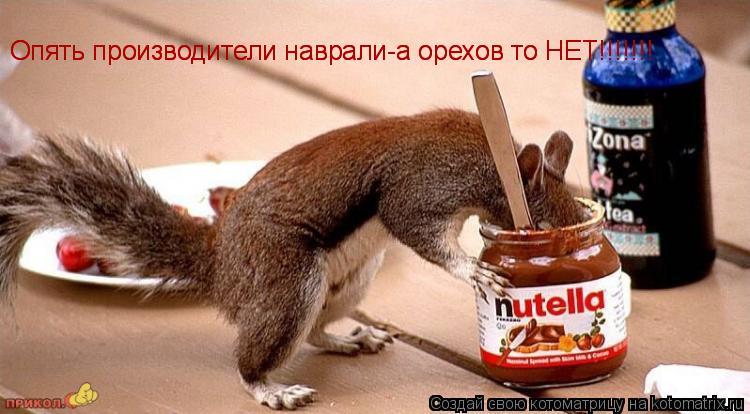 Котоматрица: Опять производители наврали-а орехов то НЕТ!!!!!!! Опять производители наврали-а орехов то НЕТ!!!!!!!