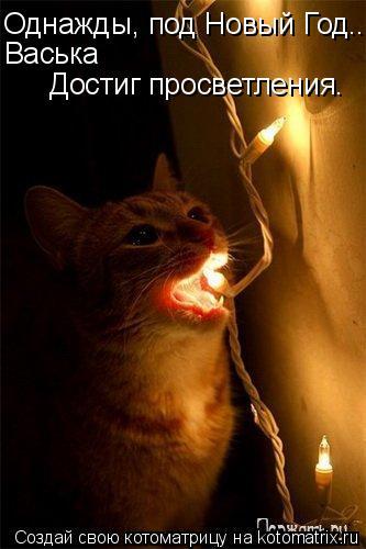 Котоматрица: Однажды, под Новый Год... Васька Достиг просветления.