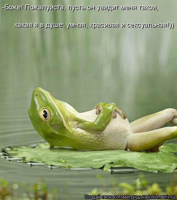Котоматрица: -Боже! Пожалуйста, пусть он увидит меня такой,   какая я в душе: умная, красивая и сексуальная!))