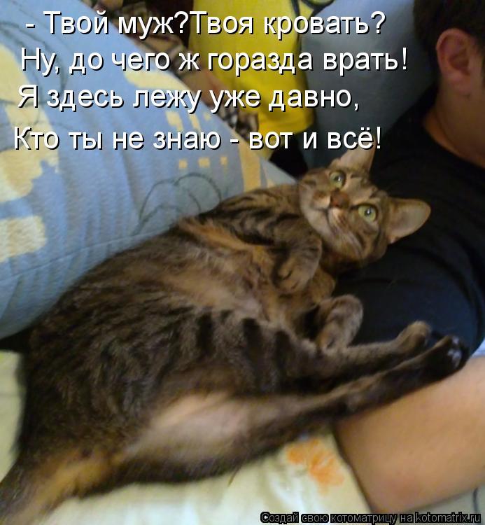 Котоматрица: - Твой муж?Твоя кровать? Ну, до чего ж горазда врать! Я здесь лежу уже давно, Кто ты не знаю - вот и всё!