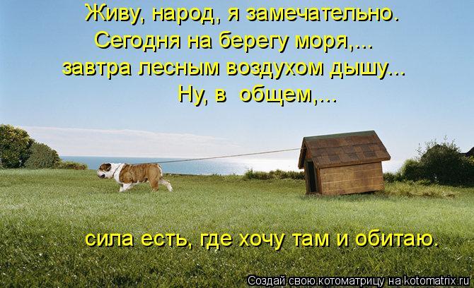 Фильм Солнечное затмение (2010)