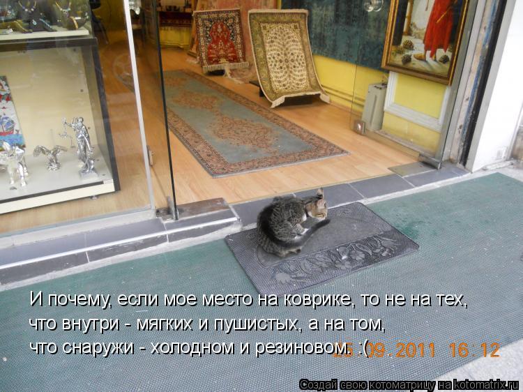 Котоматрица: что снаружи - холодном и резиновом. :( И почему, если мое место на коврике, то не на тех,  что внутри - мягких и пушистых, а на том,