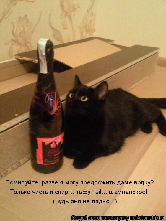 Котоматрица: Помилуйте, разве я могу предложить даме водку? Только чистый спирт...тьфу ты!... шампанское!  (Будь оно не ладно...)