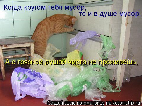 Котоматрица: Когда кругом тебя мусор,  то и в душе мусор.  А с грязной душой чисто не проживёшь.