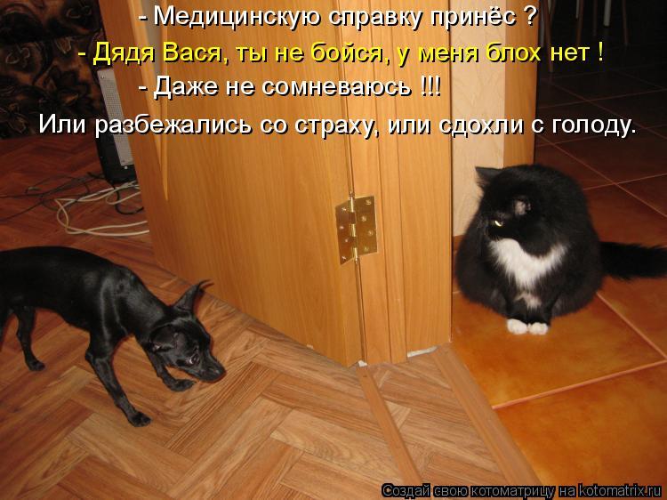 Котоматрица: - Медицинскую справку принёс ? - Дядя Вася, ты не бойся, у меня блох нет ! - Даже не сомневаюсь !!! Или разбежались со страху, или сдохли с голоду.