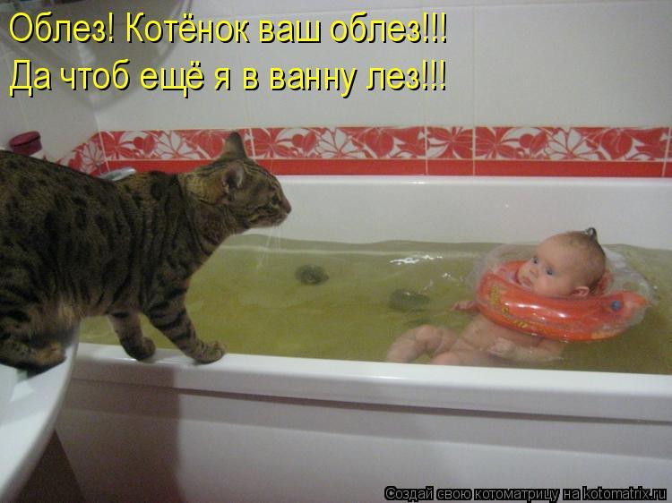 Котоматрица: Облез! Котёнок ваш облез!!!  Да чтоб ещё я в ванну лез!!!