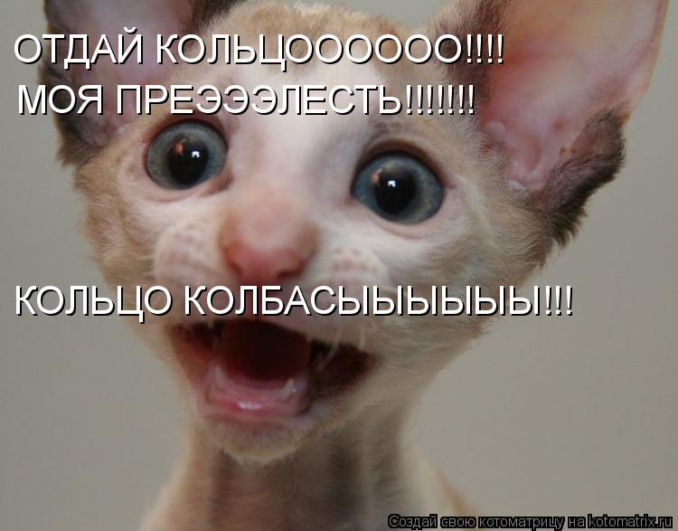Котоматрица: ОТДАЙ КОЛЬЦОООООО!!!! МОЯ ПРЕЭЭЭЛЕСТЬ!!!!!!! КОЛЬЦО КОЛБАСЫЫЫЫЫЫ!!!