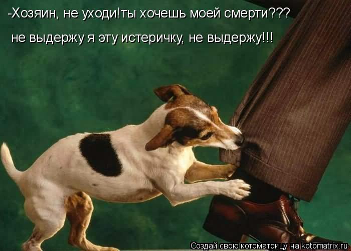 Котоматрица: -Хозяин, не уходи!ты хочешь моей смерти??? не выдержу я эту истеричку, не выдержу!!!
