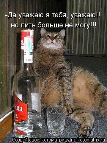 Котоматрица: -Да уважаю я тебя, уважаю!! но пить больше не могу!!!