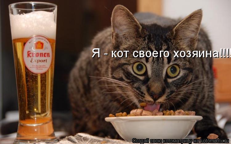 Котоматрица: Я - кот своего хозяина!!!!