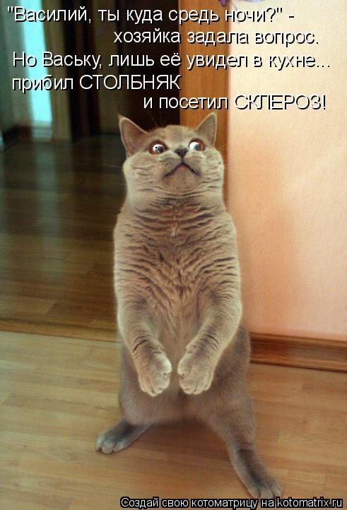 """Котоматрица: """"Василий, ты куда средь ночи?"""" - хозяйка задала вопрос. Но Ваську, лишь её увидел в кухне... прибил СТОЛБНЯК  и посетил СКЛЕРОЗ!"""