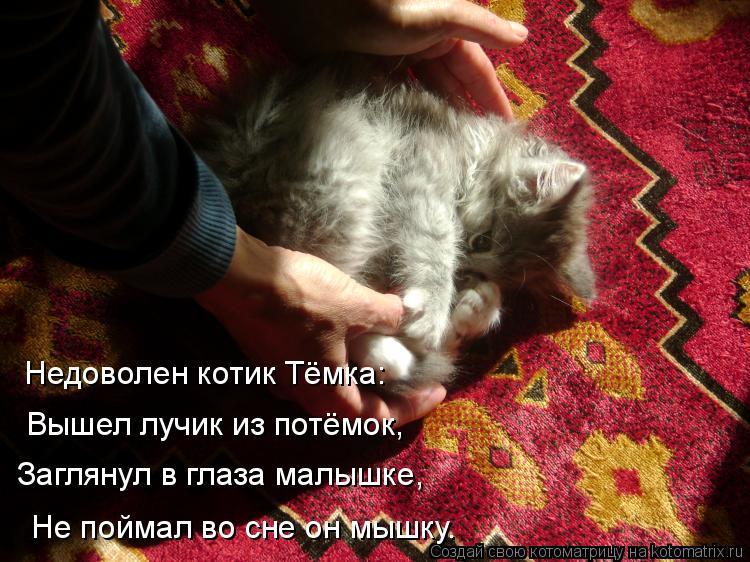 Котоматрица: Недоволен котик Тёмка: Вышел лучик из потёмок, Заглянул в глаза малышке, Не поймал во сне он мышку.