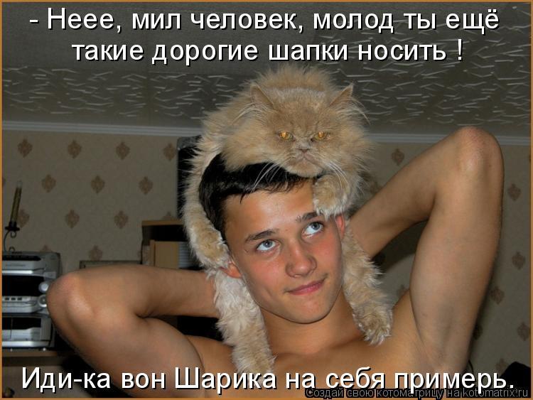 Котоматрица: - Неее, мил человек, молод ты ещё такие дорогие шапки носить ! Иди-ка вон Шарика на себя примерь.
