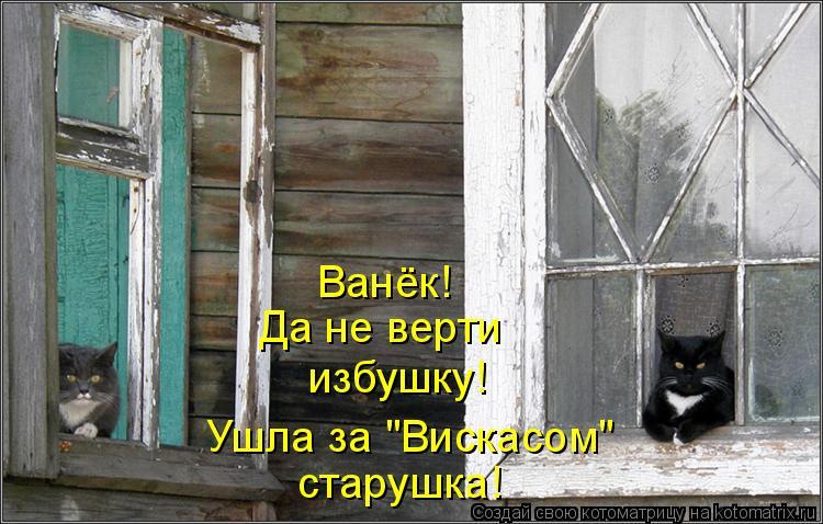 """Котоматрица: Ванёк! Да не верти избушку! Ушла за """"Вискасом"""" старушка!"""