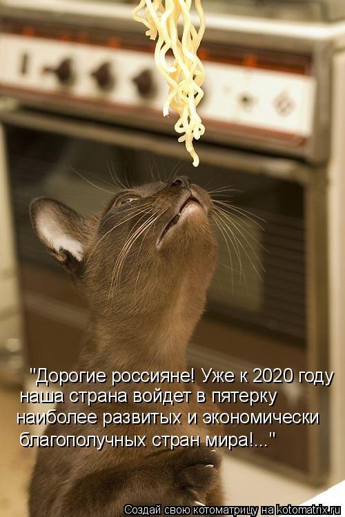 """Котоматрица - """"Дорогие россияне! Уже к 2020 году  наша страна войдет в пятерку  наиб"""