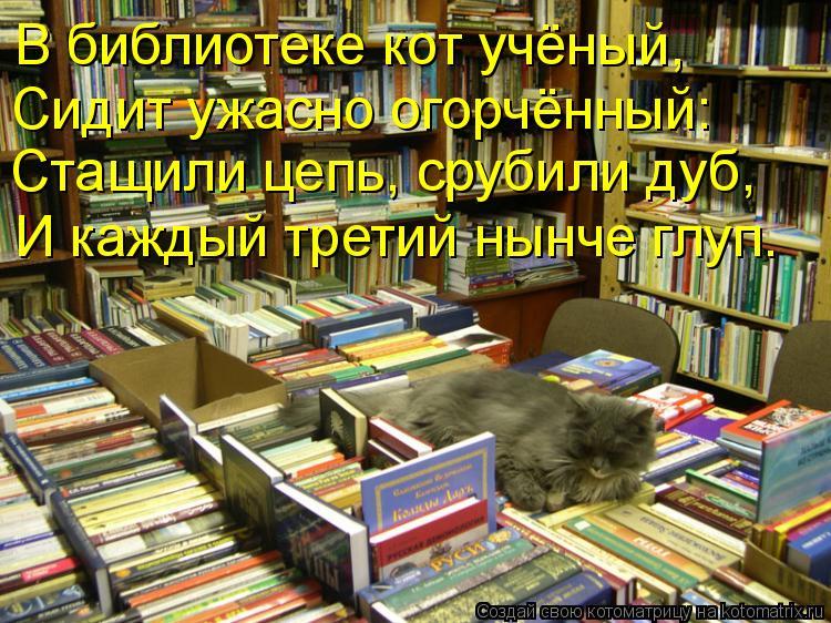 Котоматрица: В библиотеке кот учёный, Сидит ужасно огорчённый: Стащили цепь, срубили дуб, И каждый третий нынче глуп.
