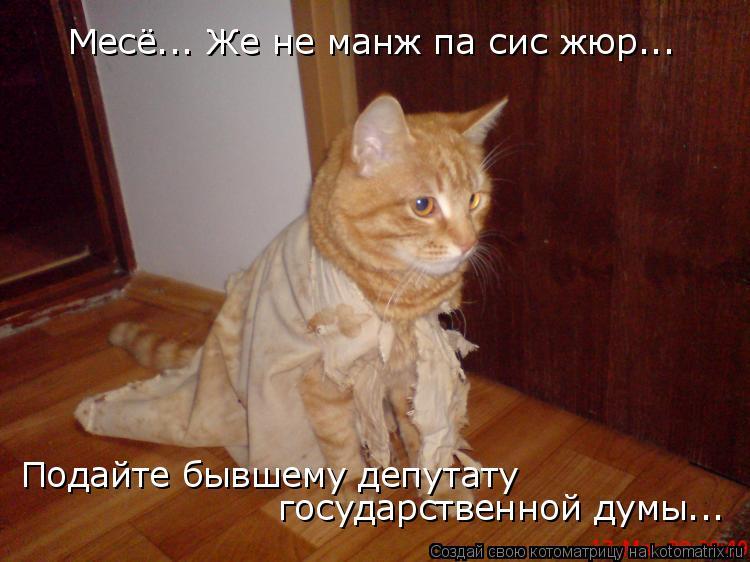 Котоматрица: Месё... Же не манж па сис жюр... Подайте бывшему депутату государственной думы...