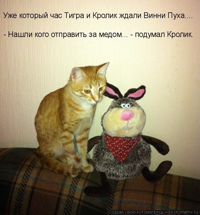 Котоматрица: Уже который час Тигра и Кролик ждали Винни Пуха.... - Нашли кого отправить за медом... - подумал Кролик.