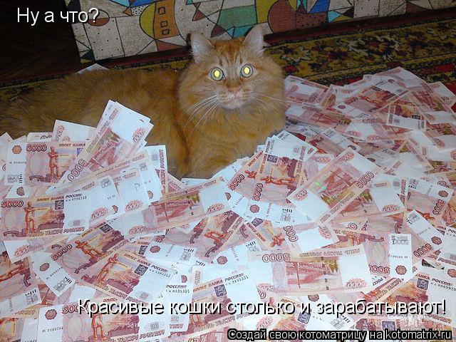 Котоматрица: Ну а что?  Красивые кошки столько и зарабатывают!