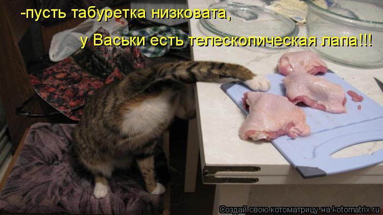 Котоматрица: -пусть табуретка низковата, у Васьки есть телескопическая лапа!!!