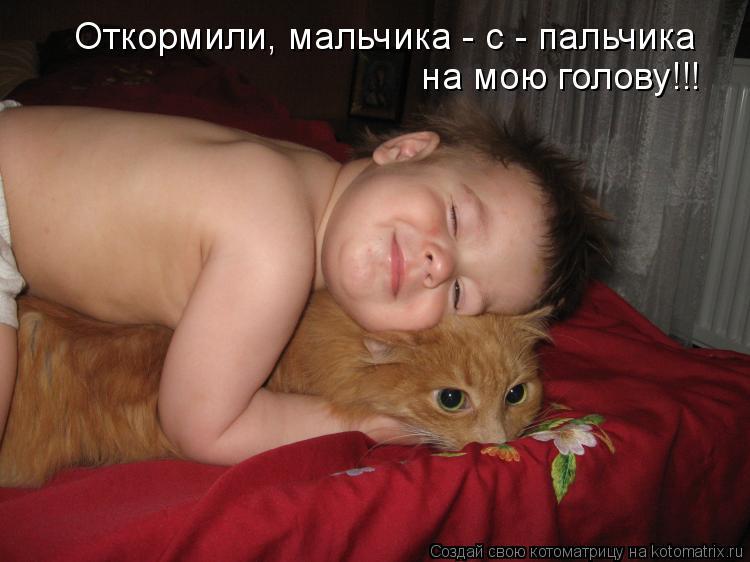 Котоматрица: Откормили, мальчика - с - пальчика  на мою голову!!!