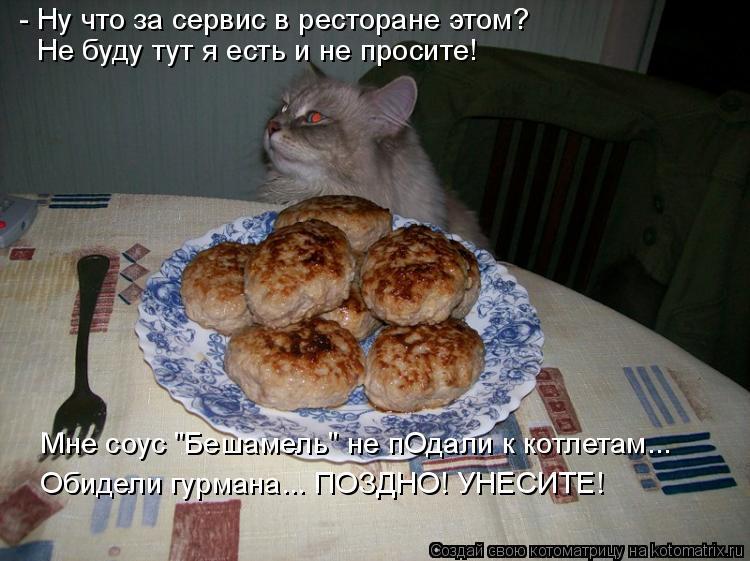 """Котоматрица: - Ну что за сервис в ресторане этом? Не буду тут я есть и не просите! Мне соус """"Бешамель"""" не пОдали к котлетам... Обидели гурмана... ПОЗДНО! УНЕСИ"""