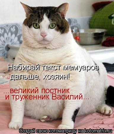 Котоматрица: Набирай текст мемуаров  дальше, хозяин! ...великий постник  и труженник Василий  ...