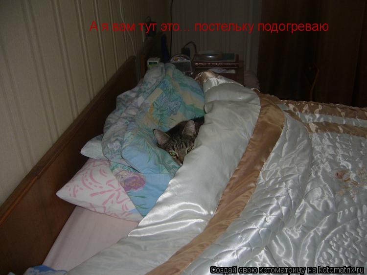 не дай вам бог семью клопов под теплым одеялом