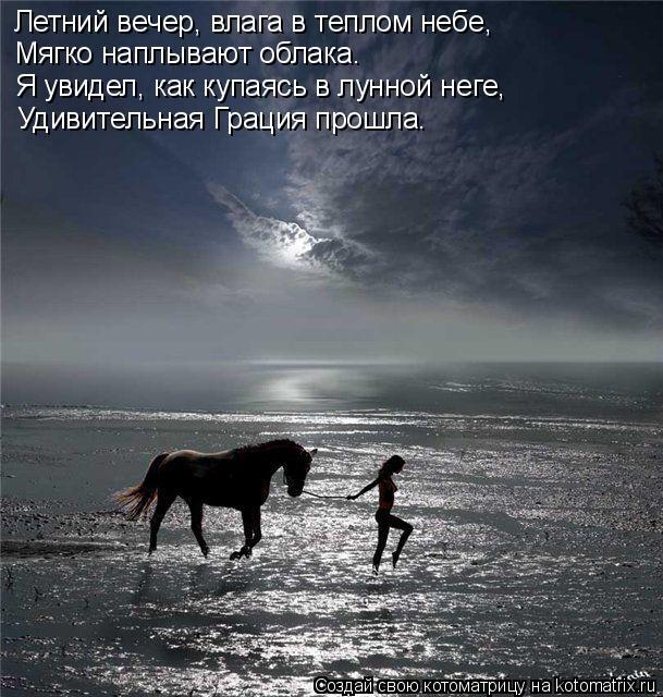 Котоматрица: Летний вечер, влага в теплом небе, Мягко наплывают облака. Я увидел, как купаясь в лунной неге, Удивительная Грация прошла.