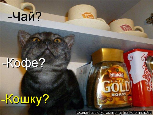 Котоматрица: -Чай? -Кофе? -Кошку?
