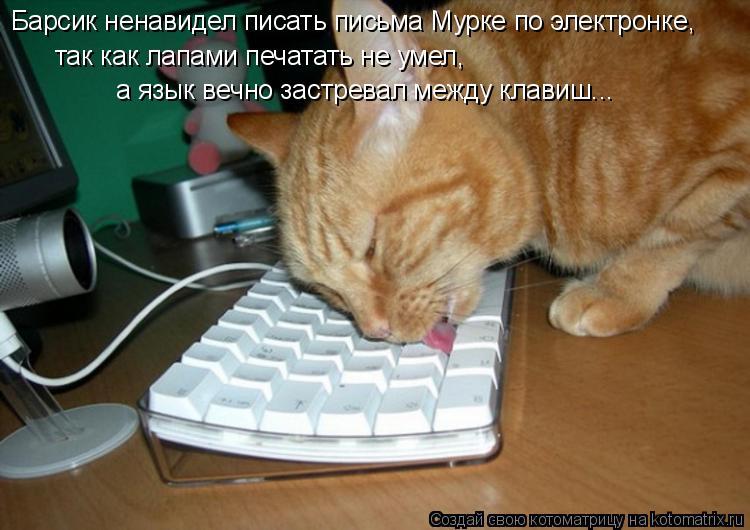Котоматрица: Барсик ненавидел писать письма Мурке по электронке,  так как лапами печатать не умел,  а язык вечно застревал между клавиш...