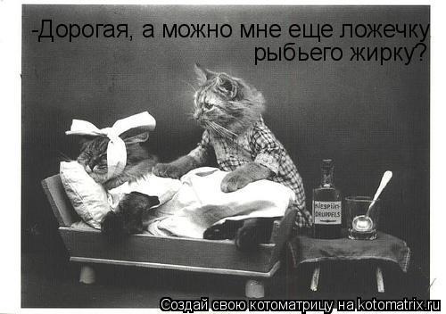 Котоматрица: -Дорогая, а можно мне еще ложечку рыбьего жирку?