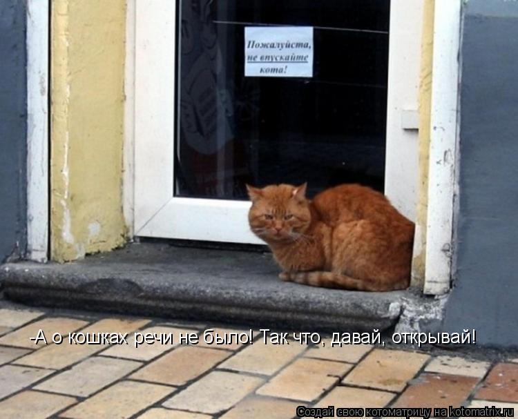Котоматрица: -А о кошках речи не было! Так что, давай, открывай!