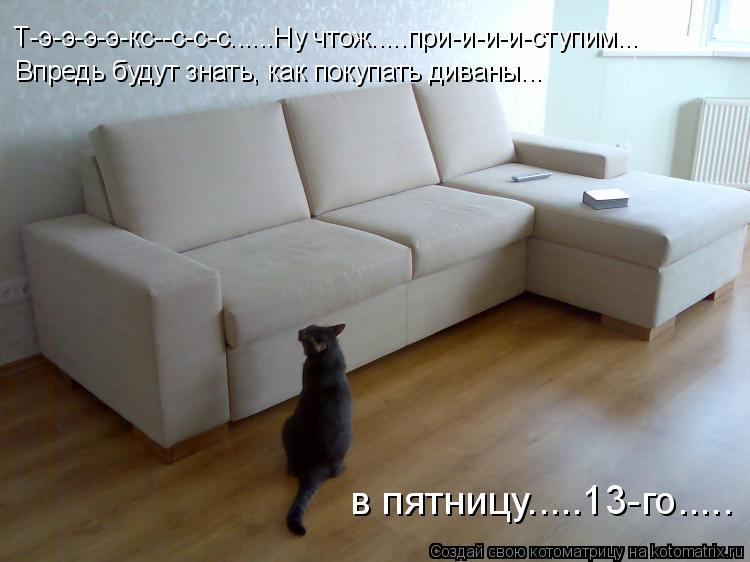 Котоматрица: Т-э-э-э-э-кс--с-с-с......Ну чтож.....при-и-и-и-ступим... Впредь будут знать, как покупать диваны... в пятницу.....13-го.....