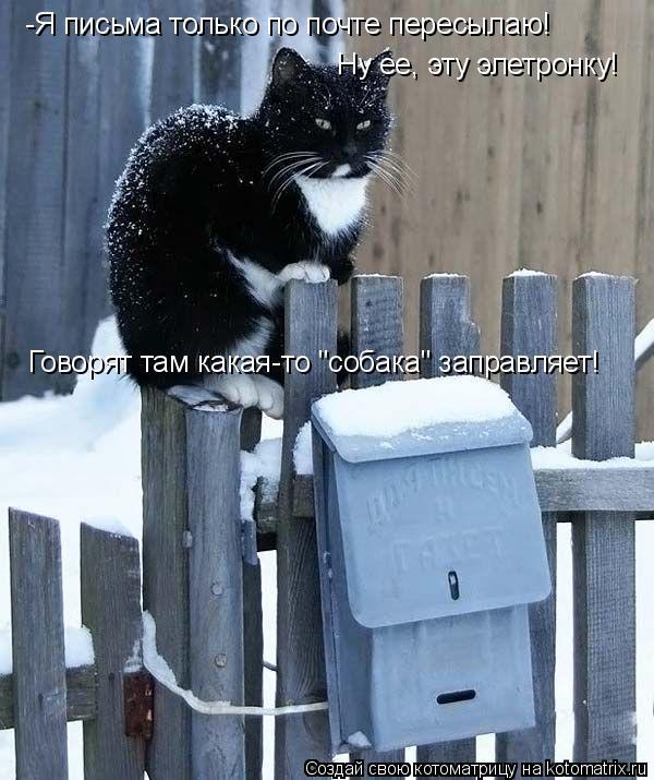 """Котоматрица: -Я письма только по почте пересылаю! Ну ее, эту элетронку!  Говорят там какая-то """"собака"""" заправляет!"""