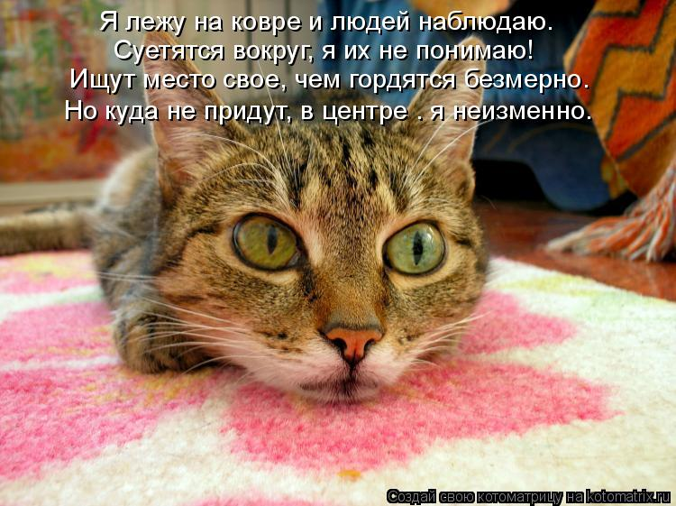 Котоматрица: Я лежу на ковре и людей наблюдаю. Суетятся вокруг, я их не понимаю! Ищут место свое, чем гордятся безмерно. Но куда не придут, в центре – я неи