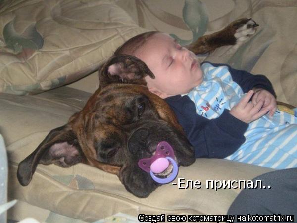 Котоматрица: -Еле приспал..