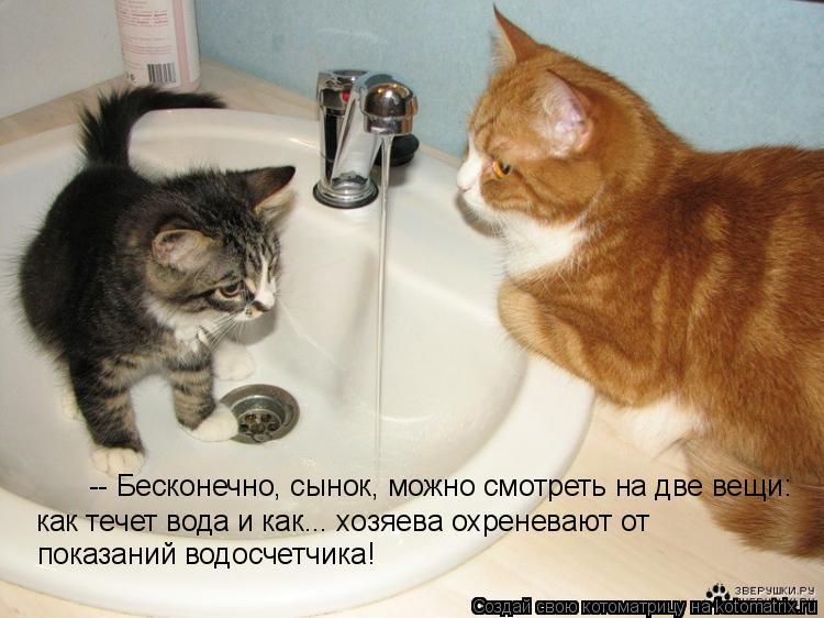 Котоматрица: -- Бесконечно, сынок, можно смотреть на две вещи: как течет вода и как... хозяева охреневают от показаний водосчетчика!