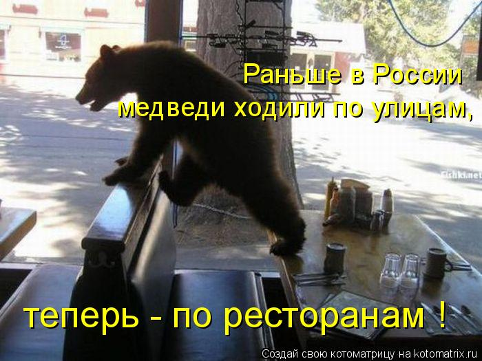 Котоматрица: медведи ходили по улицам, Раньше в России теперь - по ресторанам !