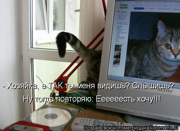 http://kotomatrix.ru/images/lolz/2011/10/12/1012103.jpg